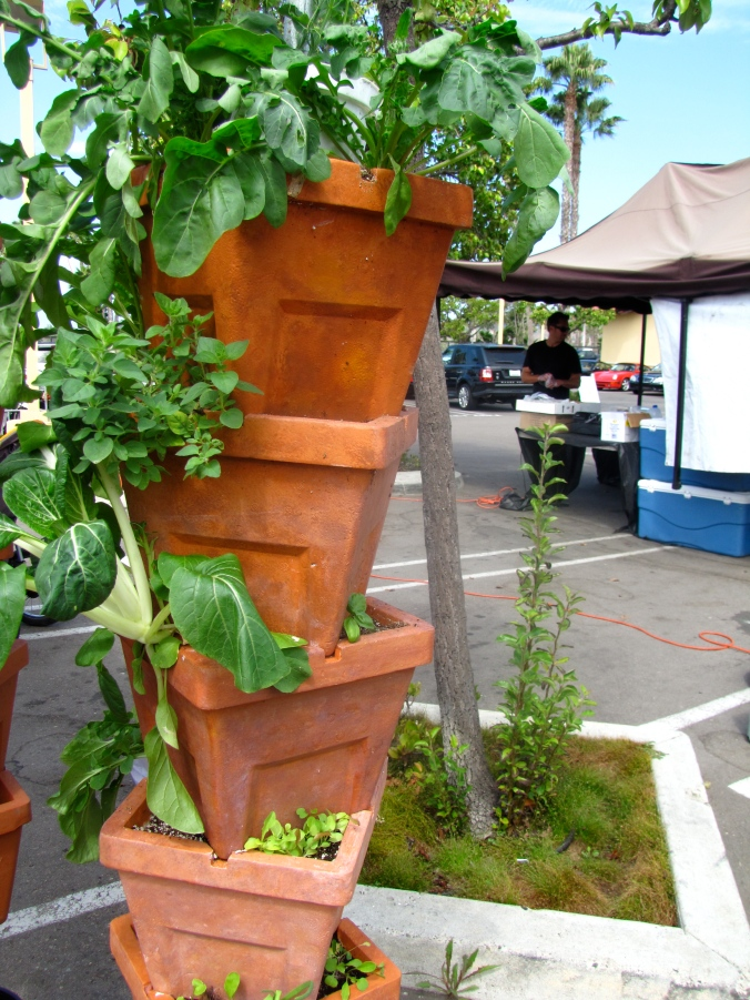 Vertical herb garden, ideal for small spaces