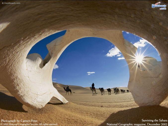 NatGeo: Desert Caravan