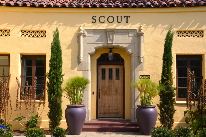 Welcome to Scout