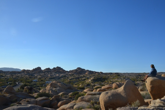 the view atop Jumbo Rocks, Joshua Tree