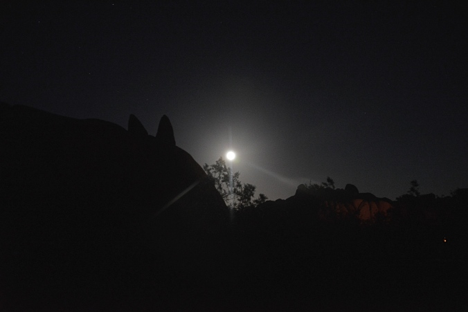 full moon at Jumbo Rocks, Joshua Tree