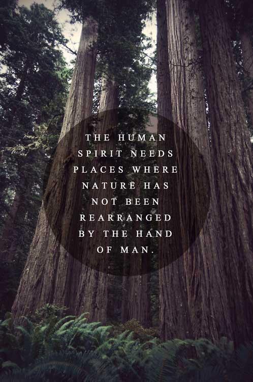 human-spirit-nature